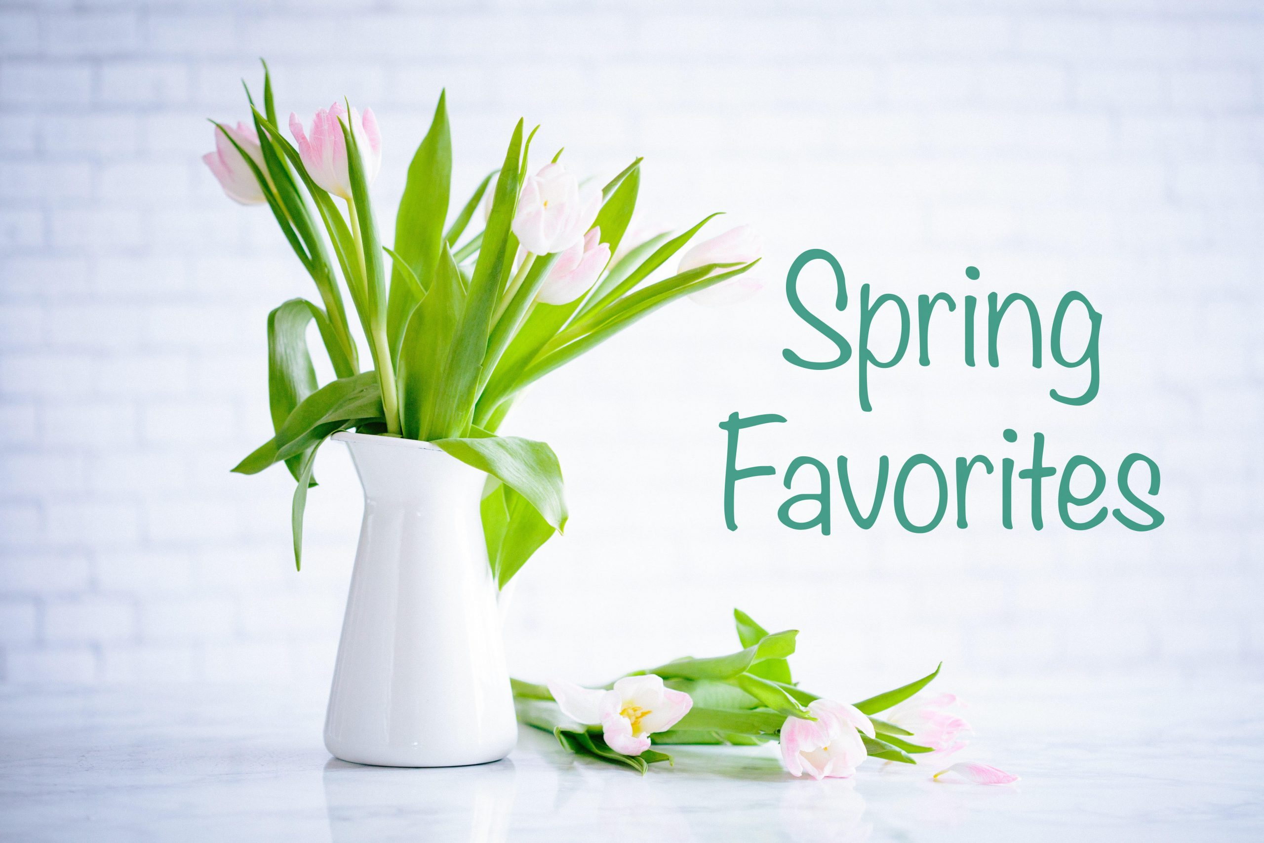 GMS Spring Favorites